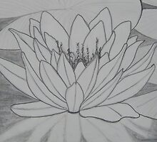 lily pad by Heather Anne