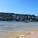 Mill Bay, East Portlemouth by lhyland