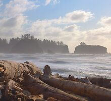 Rialto Beach, Washington State Coast by Barb White