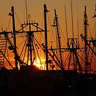 Rigging at Sunset by reindeer