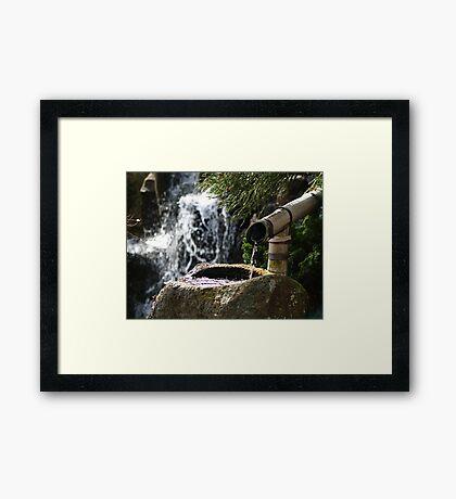 Peaceful waters - Botanical gardens Hobart Framed Print