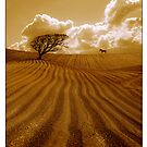 The Ploughed Field - a rural idyll by Mal Bray