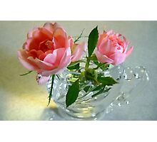 Roses in a Cup Photographic Print