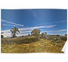 """"""" High deseat grass lands """" Poster"""