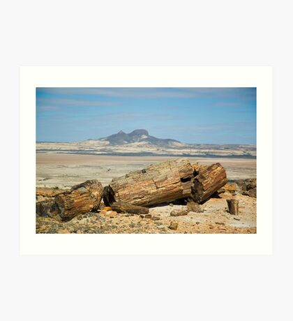 Petrified trees in Patagonia, Argentina. Art Print