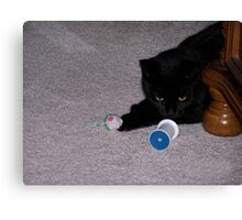 Lets Play With My Toys Canvas Print