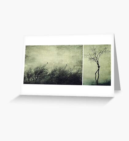 Nature ~ silhouettes Greeting Card