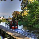 Narrow Boat at Strawberry Bank by Tom Gomez