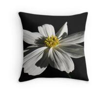 Elusive White Flower in Repose Throw Pillow