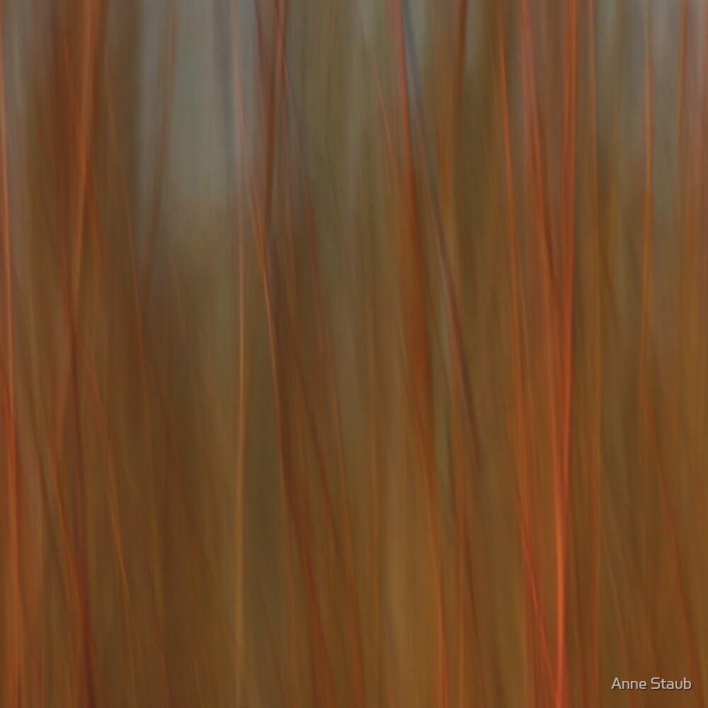 Motion by Anne Staub