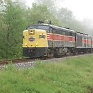 Cuyahoga Valley Train by mwfoster