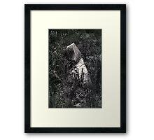 A Sinking Feeling ... Framed Print