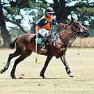 Polo Action by Sherrill Meredith