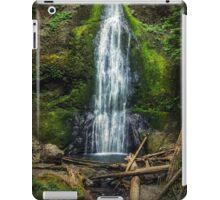 Marymere Falls Olympic Peninsula Washington iPad Case/Skin