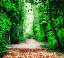Woodland Path Sticker