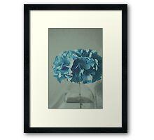 Hydrangea Framed Print