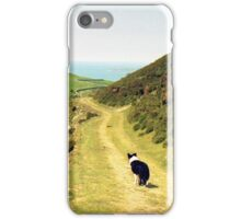 Panoramic Indy iPhone Case/Skin