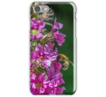 Bumble Bee on Purple Flower iPhone Case/Skin