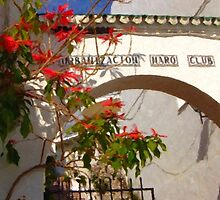 Spanish Arch and Flowers by JonDelorme