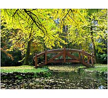Tranquilty in the gardens Photographic Print