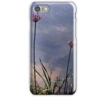 Flowering Rush iPhone Case/Skin