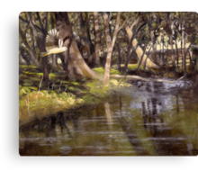The Way It's Meant To Be Canvas Print