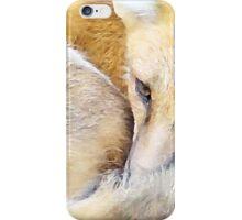 Resting Red Fox iPhone Case/Skin
