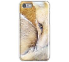 Resting Red Fox iPhone Case/Skin