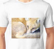 Resting Red Fox Unisex T-Shirt