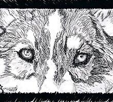 grey wolf by gypseasoul