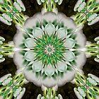 Power Jets by xzendor7
