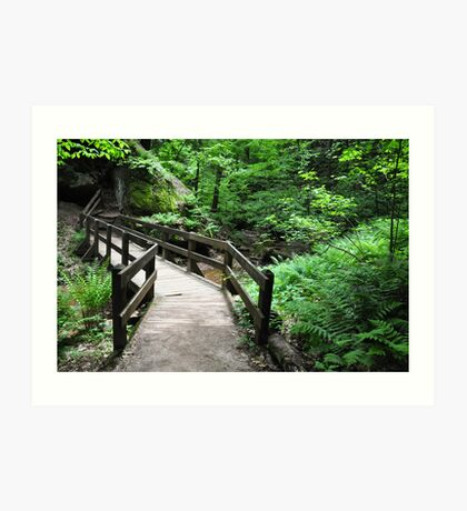 somewhere in the Hocking Hills area Art Print