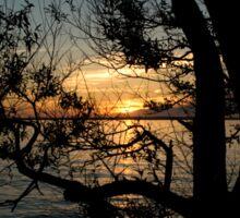 Nightfall at the Lake Sticker