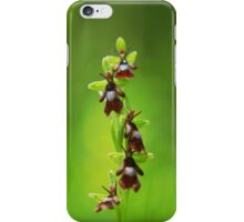 The beauty of orchids iPhone Case/Skin