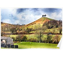 Colmers Hill Landscape Poster