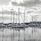 Lyme Harbour, Dorset UK 2015-07-09 by lynn carter