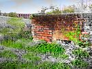 Balcombe Viaduct and Pill Box - HDR  by Colin  Williams Photography