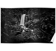 Hopetoun Falls - Otways Victoria Poster