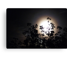Full moon 28 April 2010 Canvas Print