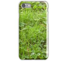 Dewdrops on the Clover iPhone Case/Skin