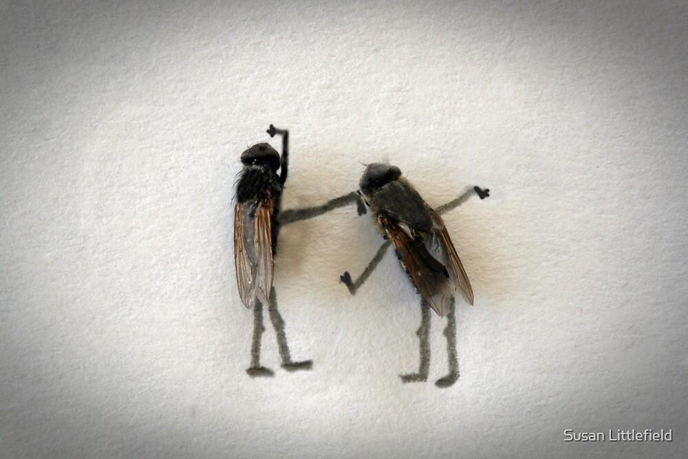 Flyswatter by Susan Littlefield