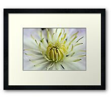 Heart of Gladys Picard Framed Print