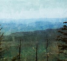 View from Clingman's Dome Tennessee Smoky Mountains by ginkelmier