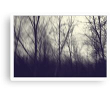 A Mid Winter Afternoon Canvas Print