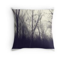 A Mid Winter Afternoon Throw Pillow