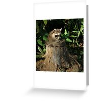 """""""It's A Perfect Fit!"""" Greeting Card"""
