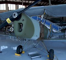 1945 Nord Stampe SV4C by Pirate77