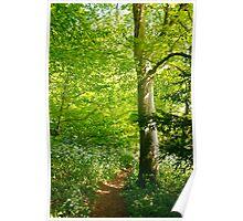 Spring in Shrewton UK Poster