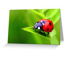 Simple A Lady Greeting Card