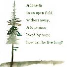 Viking proverb - A lone Fir by Vicky Webb